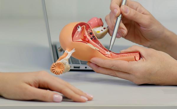 Curso superior de ginecología